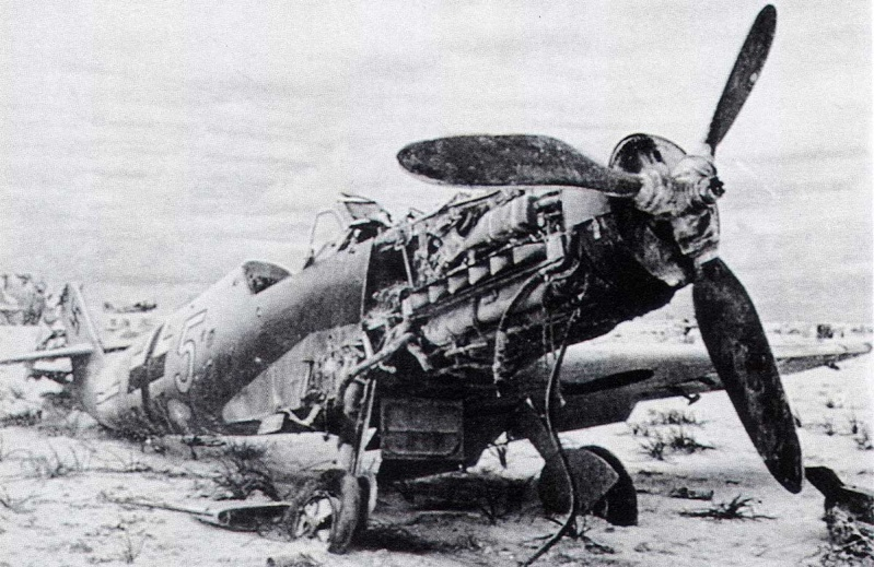 Bf109 F4 Trop. - Page 8 1-bf-110