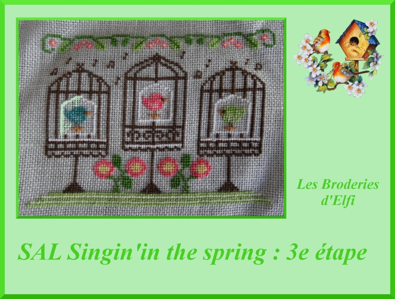 3e objectif du SAL Singin' in the spring (CCN) - Page 2 Montag14