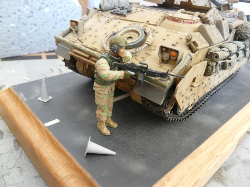 M2 Bradley Tamija 1-35  - Page 3 P1080710