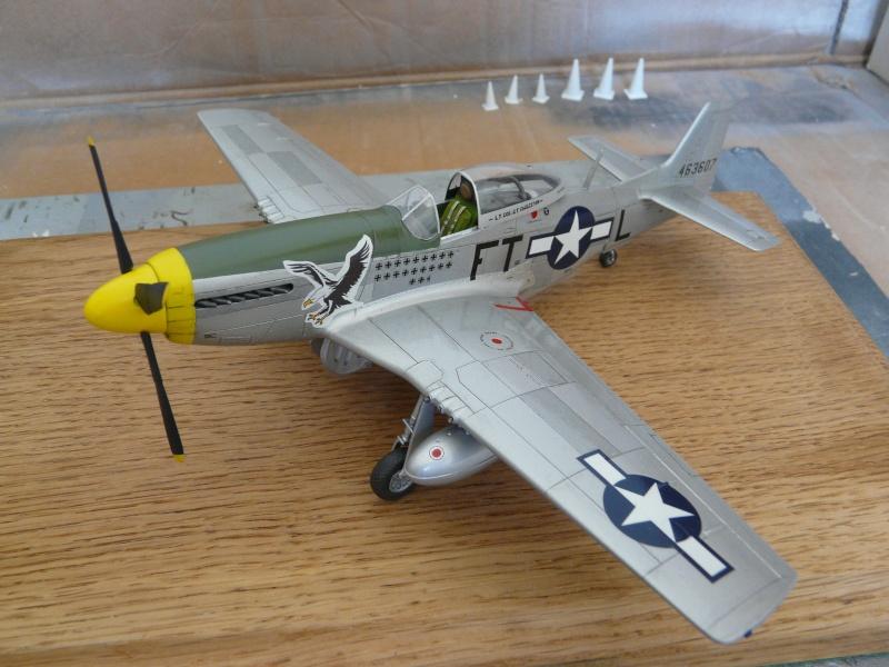 P-51D  lt col glenn t eagleston P1080810