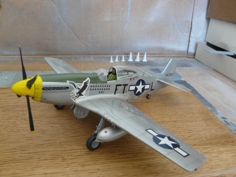 P-51D  lt col glenn t eagleston P1080811