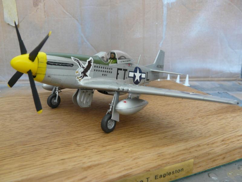 P-51D  lt col glenn t eagleston P1080814