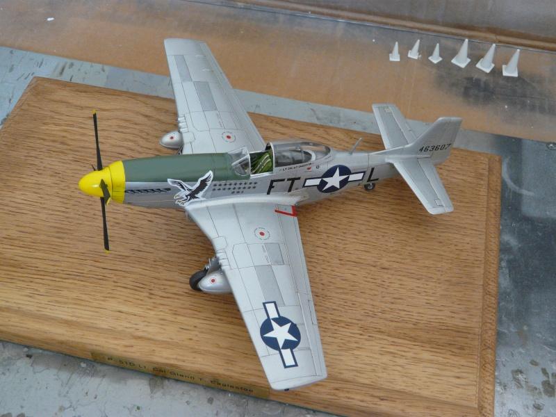 P-51D  lt col glenn t eagleston P1080818