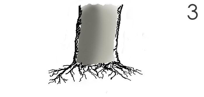 Scots pine Root610