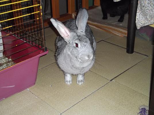 octobre 2010 2010_110