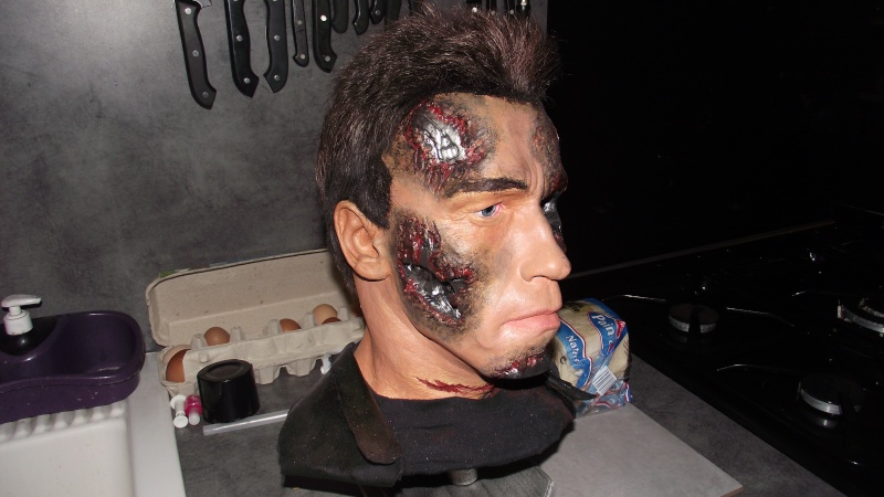Terminator 3 Bust damaged 1/1 (Arnold) Dscf2512