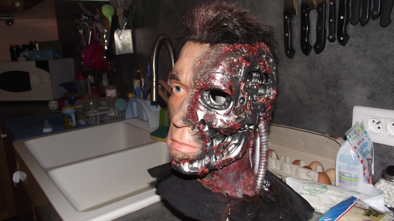 Terminator 3 Bust damaged 1/1 (Arnold) Dscf2513