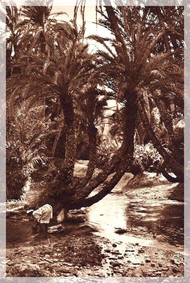 La Féerie Marocaine - Page 8 Scan_109