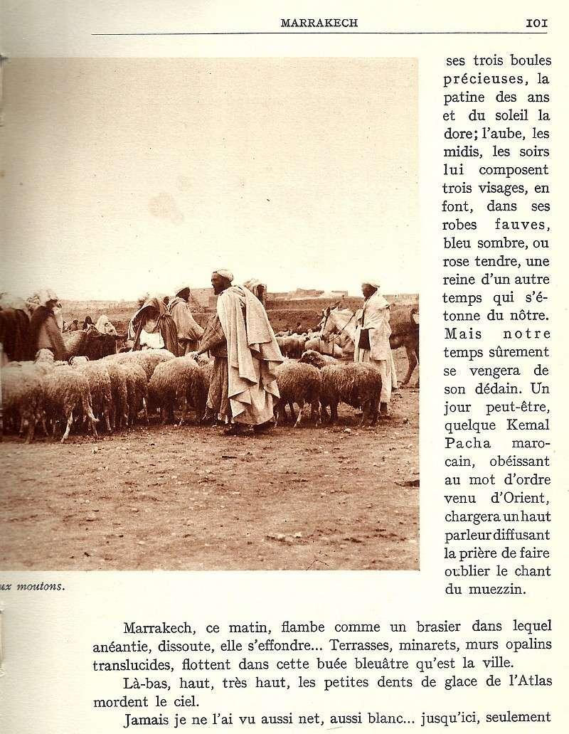 La Féerie Marocaine - Page 5 Scan_111