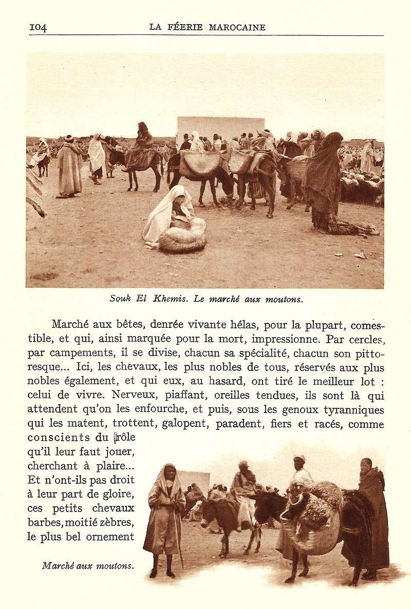 La Féerie Marocaine - Page 5 Scan_115