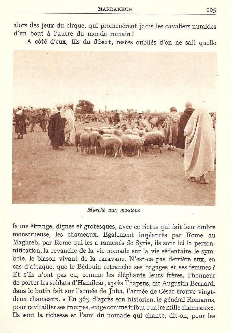La Féerie Marocaine - Page 5 Scan_116