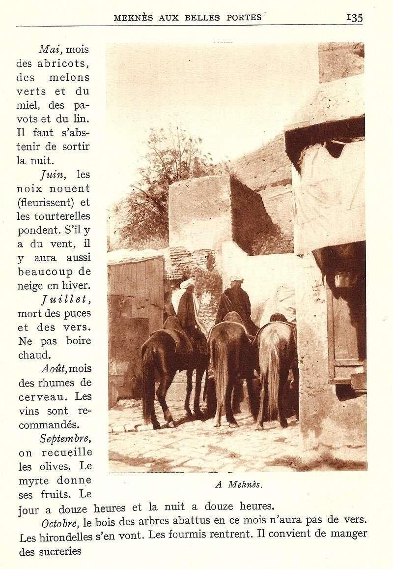 La Féerie Marocaine - Page 6 Scan_149
