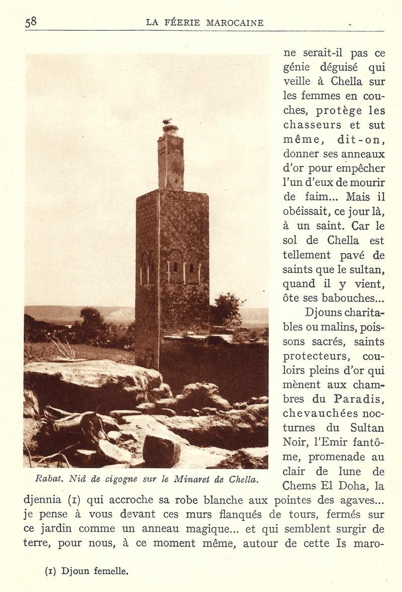 La Féerie Marocaine - Page 3 Scan_519