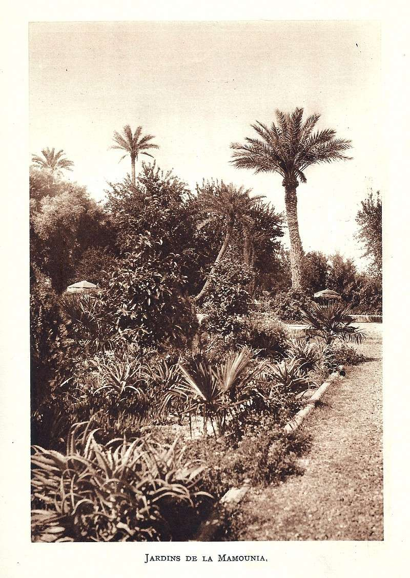 La Féerie Marocaine - Page 4 Scan_717