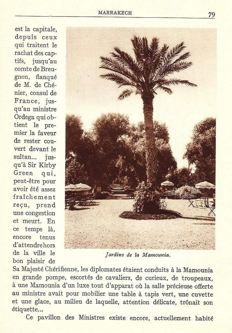 La Féerie Marocaine - Page 4 Scan_719