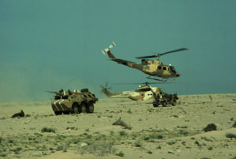 Le conflit armé du sahara marocain - Page 2 Sahara46