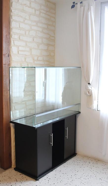 Gros projet Aqua-terrarium pour dendrobates Img_6010
