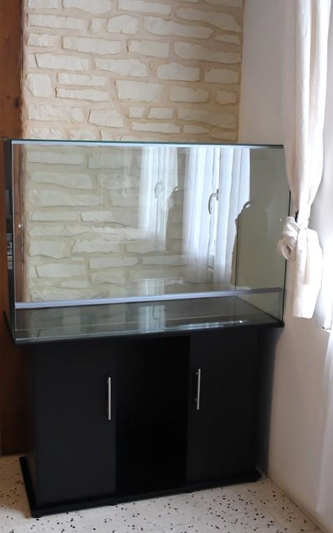 Gros projet Aqua-terrarium pour dendrobates Img_6012