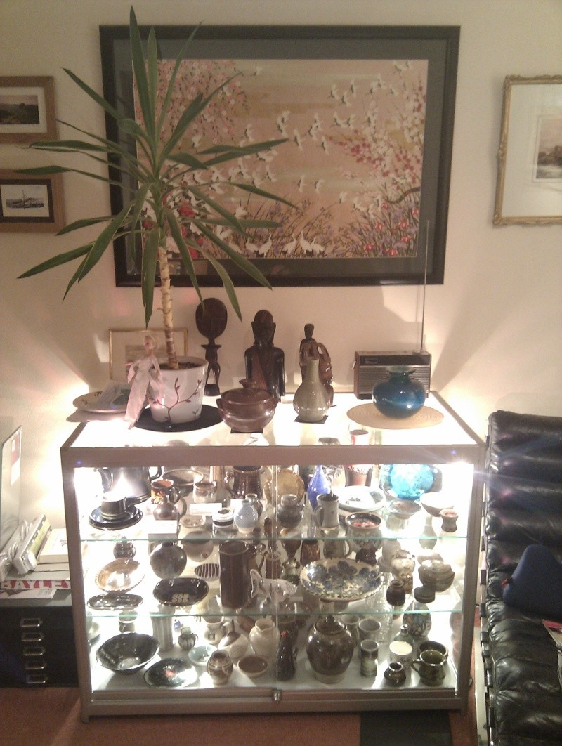 How do you display your collection? - Page 4 2012-110