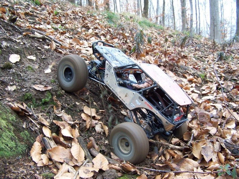 Axial wraith kit by gicab 100_7810