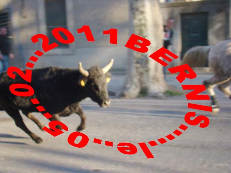 05..02..2011...Bernis Dsc80110