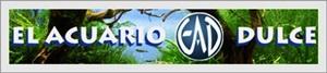 Links Amigos o De interés. Banner10