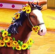 avatar de la liste (compléte) carnaval  Shenan10