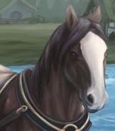 avatar de la liste (compléte) carnaval  Zabari11