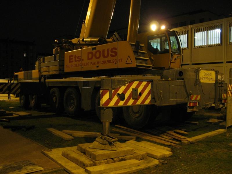 Les grues de DOUS (France) - Page 4 Photo_22