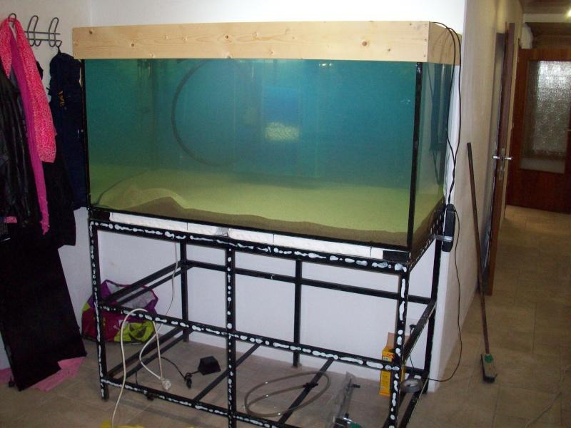 Mes 5 aquariums 100_5322