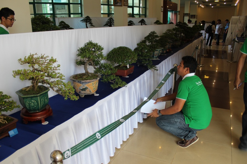 Vietnam International bonsai show Img_3114