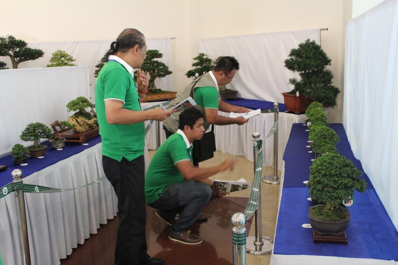 Vietnam International bonsai show Img_3115