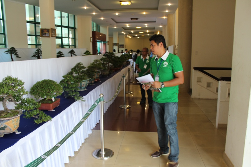 Vietnam International bonsai show Img_3116