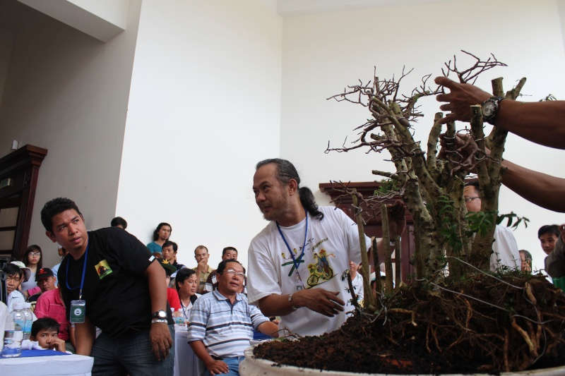 Vietnam International bonsai show Img_3312