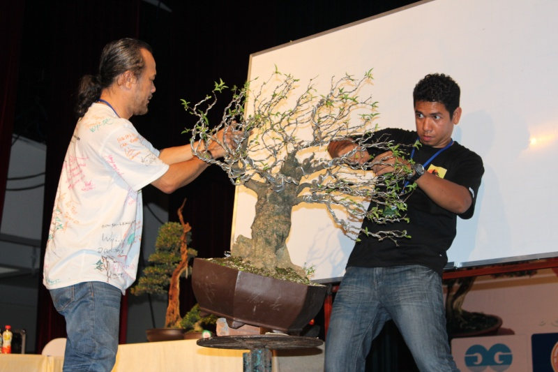 Vietnam International bonsai show Img_3410