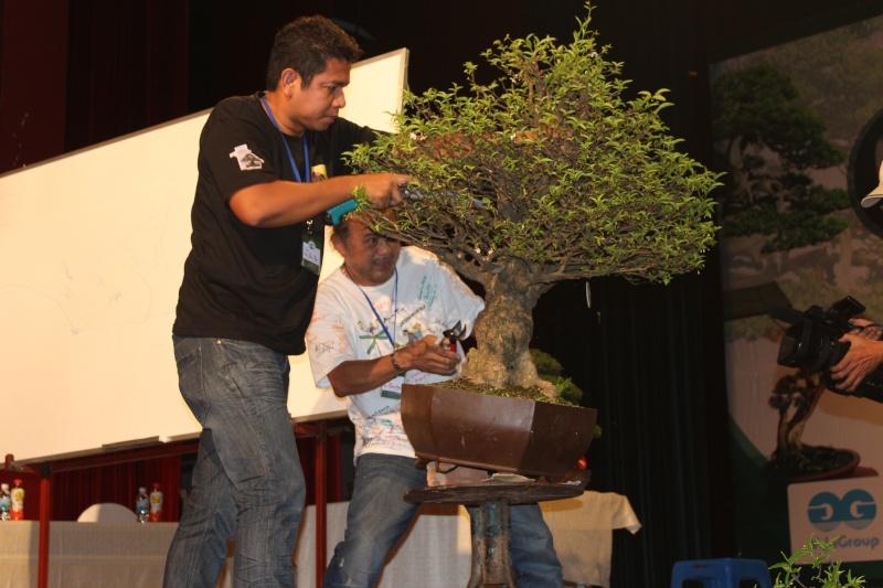 Vietnam International bonsai show Img_3411