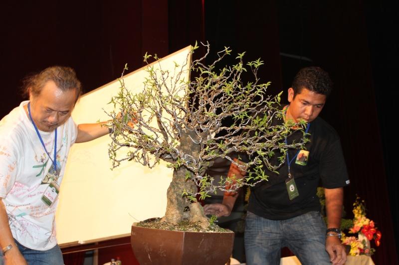 Vietnam International bonsai show Img_3414