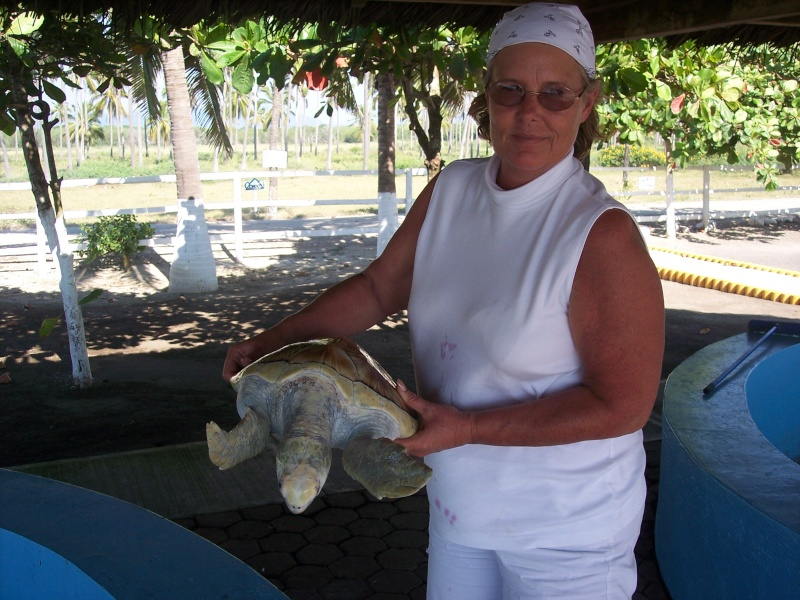 Combine Deep Sea Fishing Experience with Sea turtles protection. 2006-110
