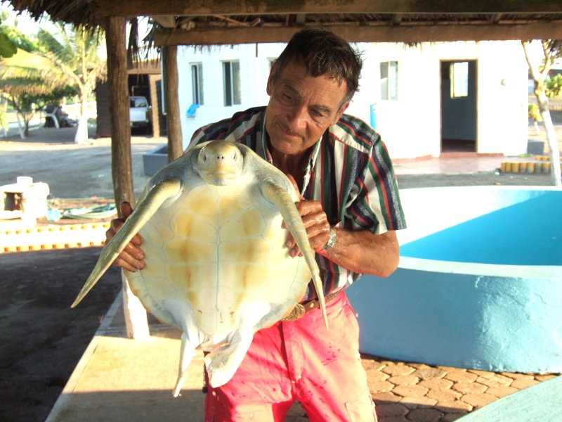 Combine Deep Sea Fishing Experience with Sea turtles protection. 2006-112