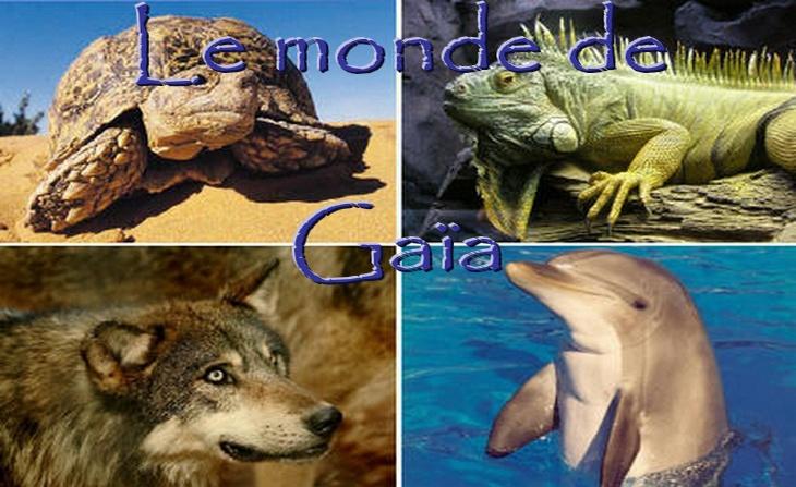 Le Monde de Gaïa