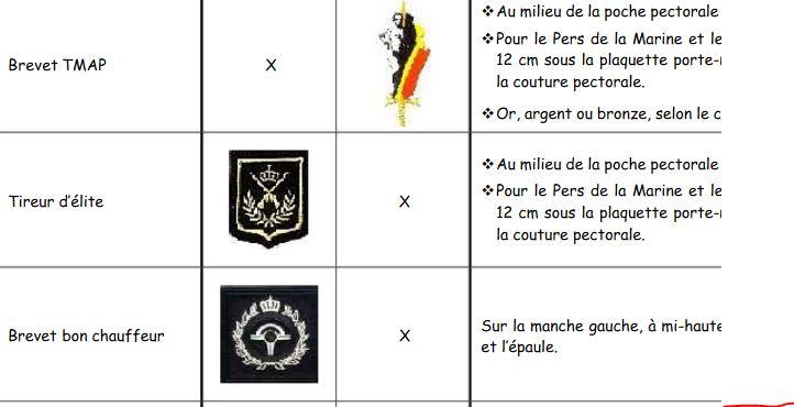 Les insignes portés sur les tenues Tmap10