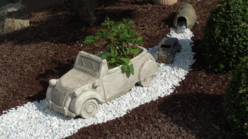 Un peu de jardin pour se changer les idées... S3830010