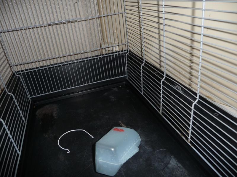 [marseille] a vendre plusieurs cages  P1020713