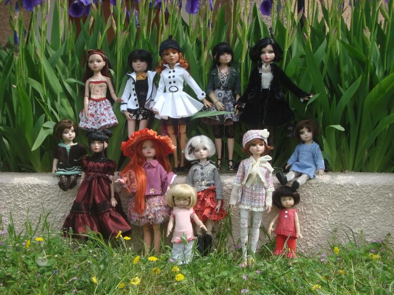 Mes iris attirent du monde, histoire d'une belle rencontre Dsc00521