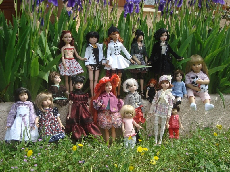 Mes iris attirent du monde, histoire d'une belle rencontre Dsc00610