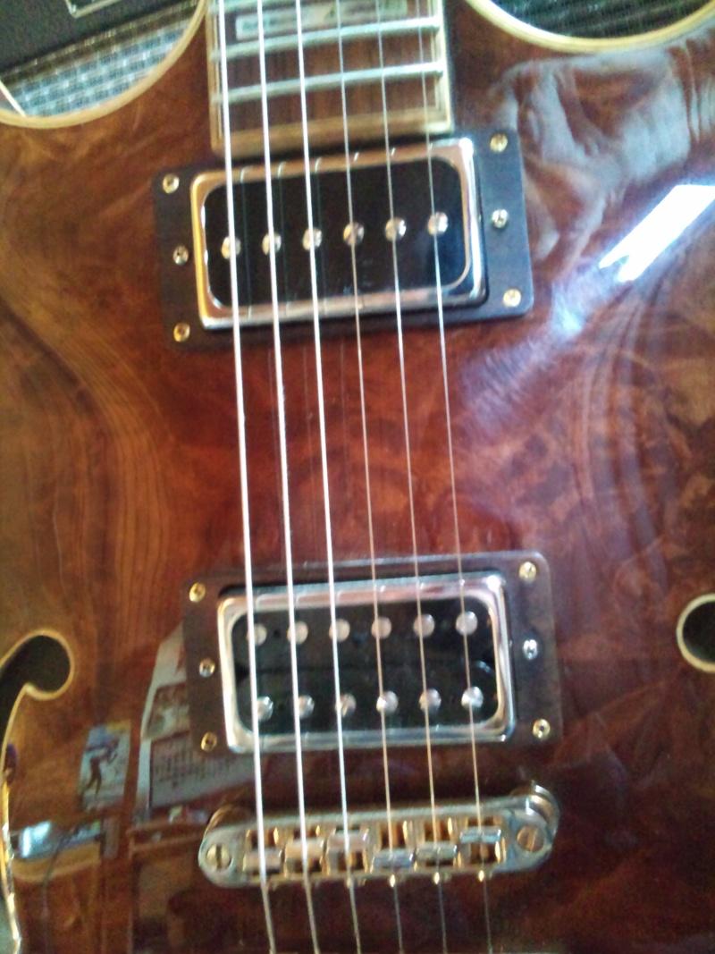 la guitare de vos reve elle est comment ? Dsc_0110