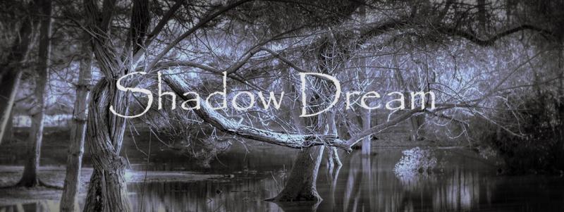 SHADOW DREAM Lanier11