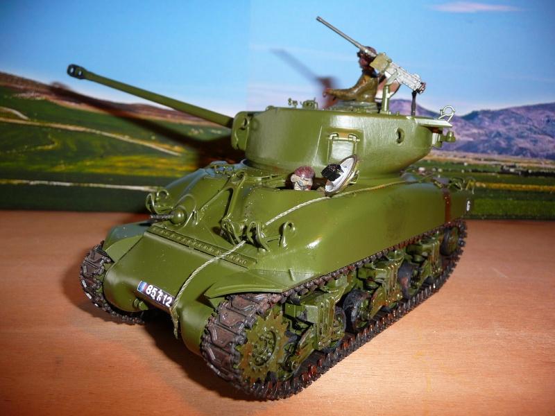 Mon dernier Sherman M4A1 76mm frein de bouche au 8éme Rég. de Chasseurs d'Afrique -Bizerte 1954 P1040724
