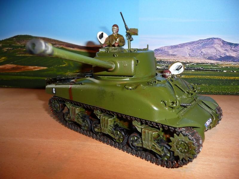 Mon dernier Sherman M4A1 76mm frein de bouche au 8éme Rég. de Chasseurs d'Afrique -Bizerte 1954 P1040726