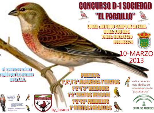 """""""EL PARDILLO"""" SOCIAL D-1 2013 Concur10"""